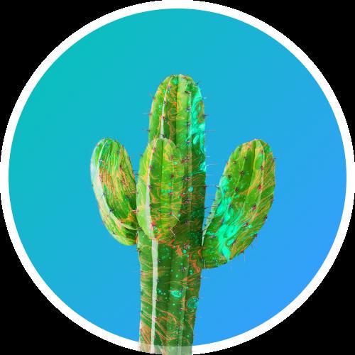Kaktus Kreatives logo